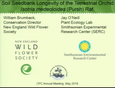 Screenshot from Soil Seedbank Longevity of a Terrestrial Orchid video