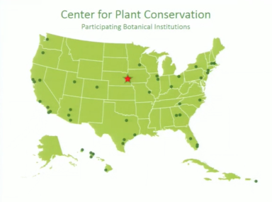 Screenshot from Rare Plant Survey Leads to Ecosystem Scale Research Initiative video