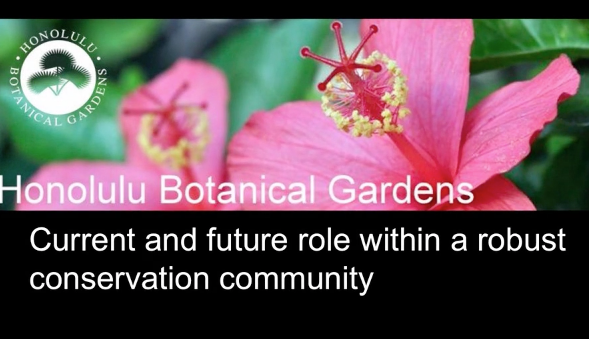 Screenshot from Honolulu Botanical Gardens current and future role within a robust conservation community video