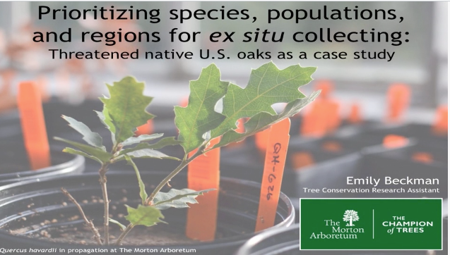 Screenshot from Prioritizing species, populations, and regions for ex situ collecting: Threatened native U.S. oaks as a case study video
