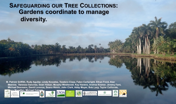 Screenshot from Safeguarding our tree collections: Gardens coordinate to manage diversity video