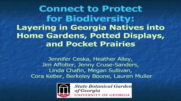 Screenshot from Connect to Protect for Biodiversity - Layering Georgia Natives into home gardens, potted displays, and pocket prairies video