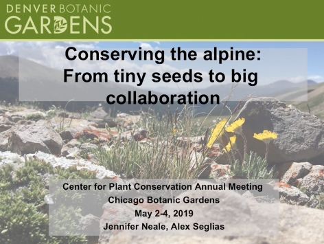 Screenshot of Conserving the Alpine: From Tiny Seeds to Big Collaboration video