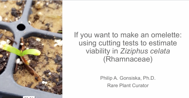 Screenshot of If you want to make an omelette: using cutting tests to estimate viability in Ziziphus celata (Rhamnaceae) video