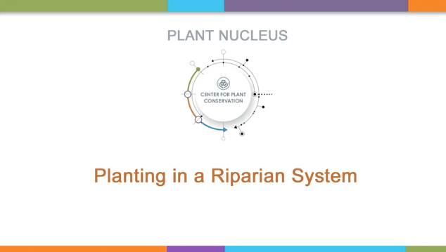 Screenshot from Planting in a Riparian System video