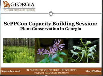 Screenshot of Building Capacity in Plant Conservation video