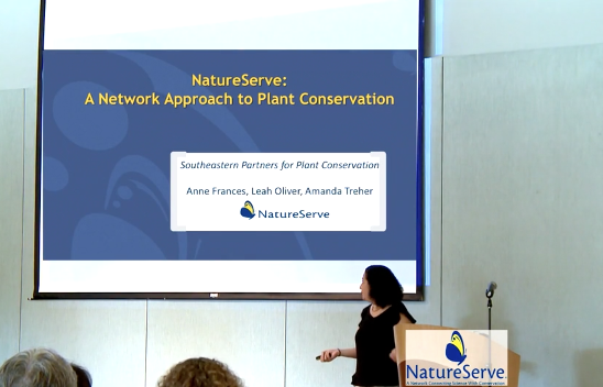 Screenshot from NatureServe: A Network Approach to Plant Conservation video