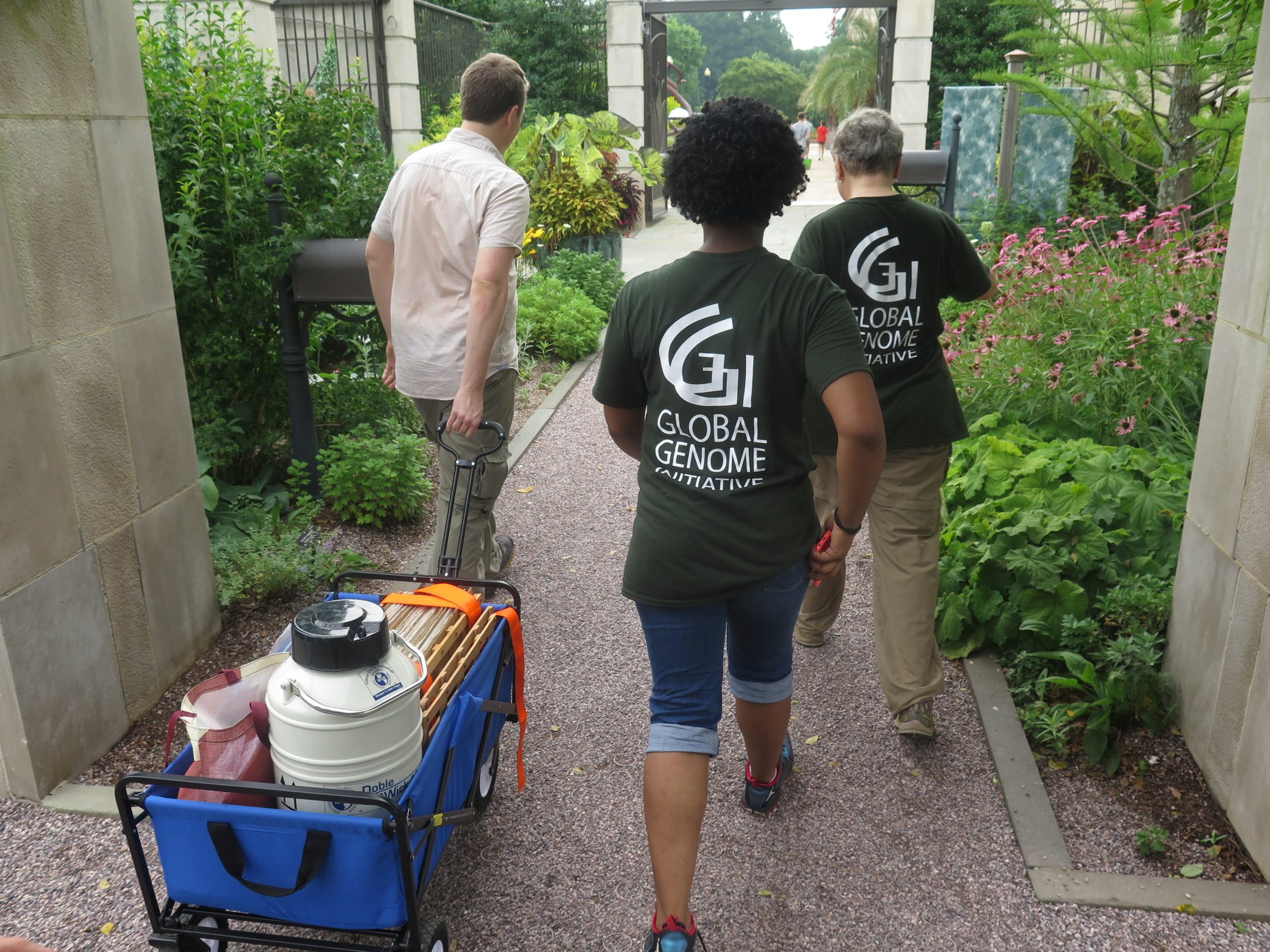 GGI-Gardens collection team sampling at the United States Botanic Garden in Washington, DC. L to R: GGI-Gardens Director, Dr. Morgan Gostel, Smithsonian YES! Intern, Asia Hill, and GGI-Gardens Founder, Dr. Vicki Funk.