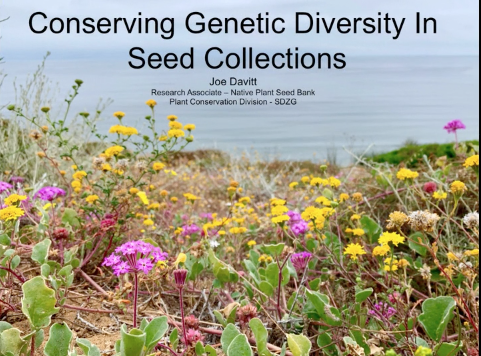 Screenshot of Conserving Genetic Diversity in Seed Collections video