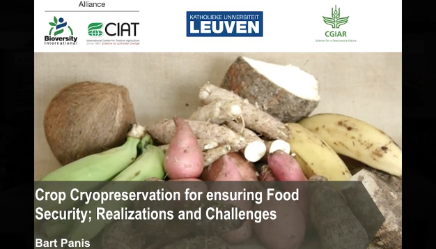 Screenshot of Crop Cryopreservation for Ensuring Food Security; Realizations and Challenges video