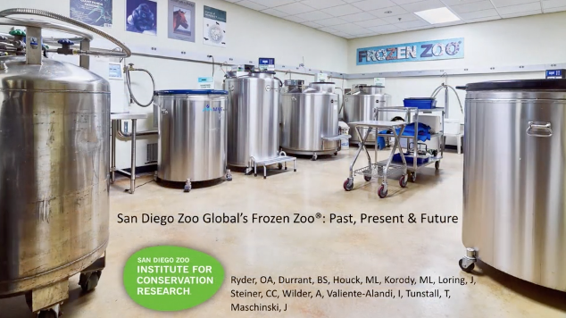 Screenshot of The Frozen Zoo® of San Diego Zoo Global: Past, Present, and Future video