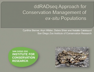 Screenshot of ddRADseq Approach for Conservation Management of Ex-situ Populations video