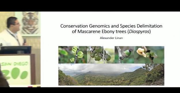 Screenshot of Conservation Genomics and Species Delimitation of Mascarene Ebony trees (Diospyros) video