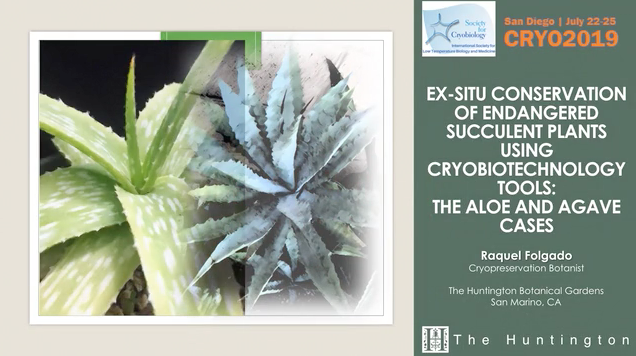 Screenshot of Ex-Situ Conservation of Endangered Succulent Plants Using Cryobiotechnology Tools video