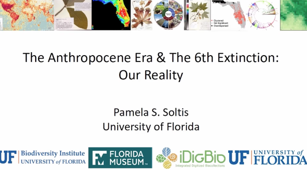 Screenshot of Anthropocene Era & the 6th Extinction: Our Reality video