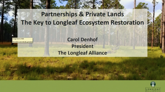 Screenshot of Partnerships and Private Lands: The Key to Longleaf Ecosystem Restoration video.
