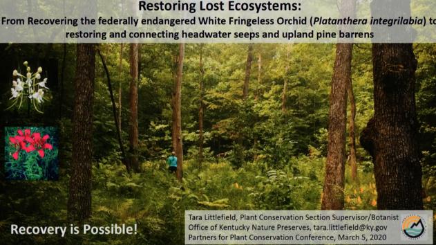 Screenshot of Restoring Lost Ecosystems video.