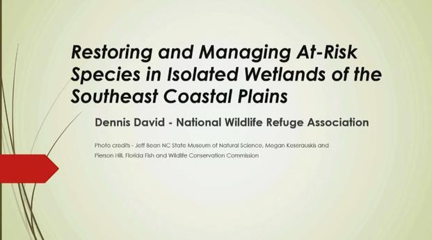 Screenshot of Ephemeral Wetlands Management Workshops in Florida and North Carolina Restoration and Fire in Ephemeral Wetlands video.