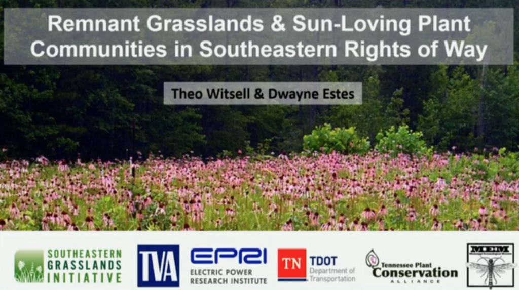 Screenshot of Remnant Prairies and Sun-Loving Plant Communities in Southeastern Rights of Ways video.