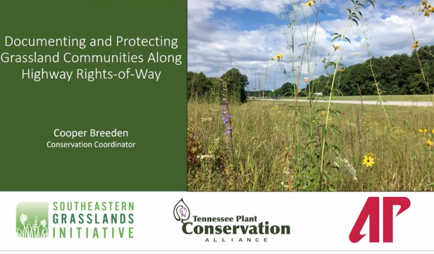 Screenshot of Documenting and Protecting Grassland Communities Along Highway ROWs in Tennessee video.