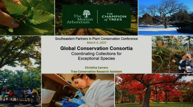 Screenshot Global Conservation Consortia: Coordinating Collections for Exceptional Species video