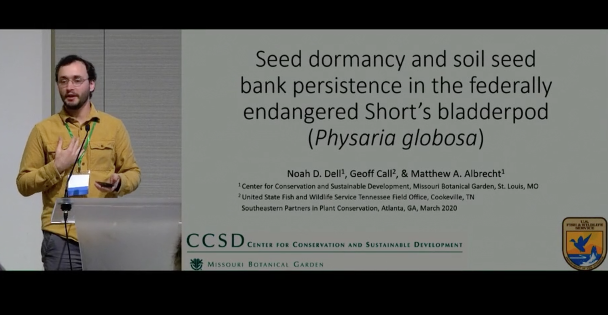Screenshot of Seed Dormancy and Soil Seed Bank Persistence in the Federally Endangered Short's Bladderpod video