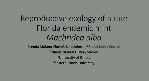 Screenshot of Reproductive Ecology of a Rare Florida Endemic Mint, Macbridea alba video
