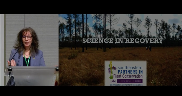 Screenshot of Science in Recovery: Life History of Euphorbia telephioides video
