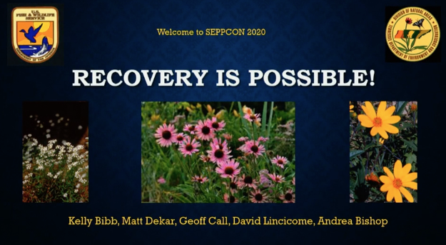 Screenshot of Recovery is Possible, Introduction and Overview video