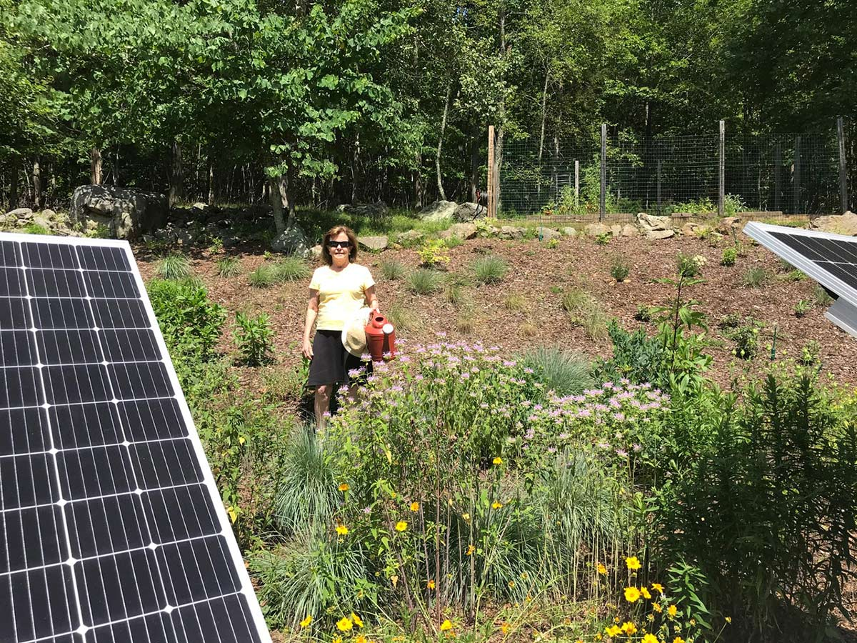 Lindsay's environmental ethos is neatly represented in her garden, where a pollinator garden is tucked between solar panels and she provides her plants water collected from a rain barrel.
