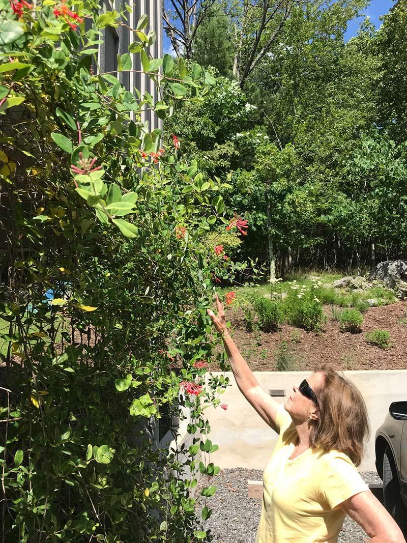 Lindsay Marshall in her garden.
