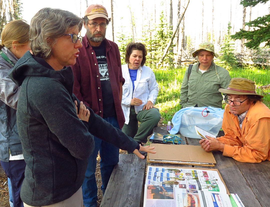 At Rare Care's annual monitoring spring weekend, Wendy (foreground) goes over some vouchers with the Washington National Heritage Program botanist and a team of volunteers.