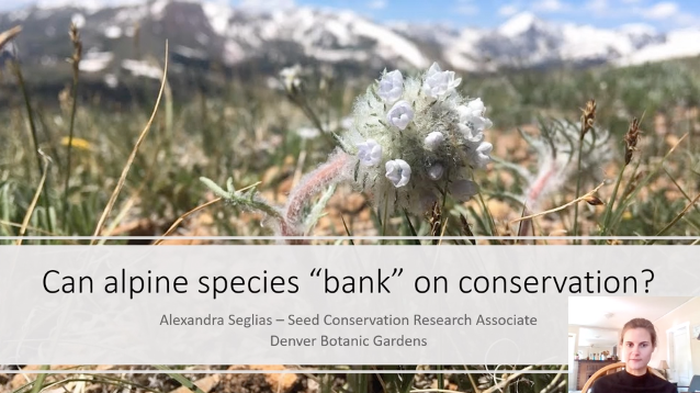 "Screenshot of Can alpine species ""bank"" on conservation? video."