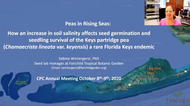 Screenshot from Raising Peas in Rising Seas video.