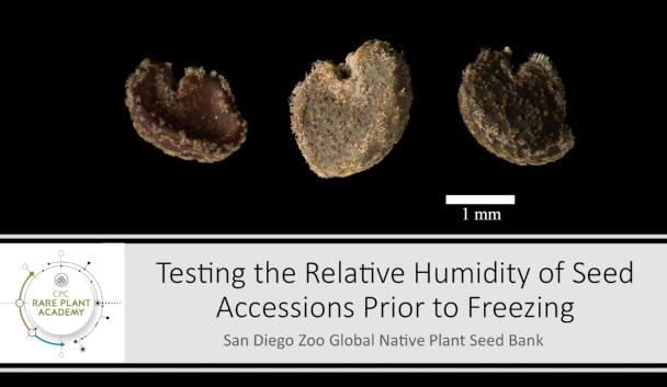 Screenshot from Relative Humidity video.