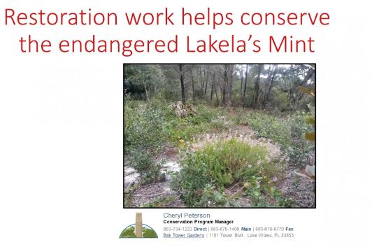 Screenshot from Restoration work helps preserve Lakela's Mint video