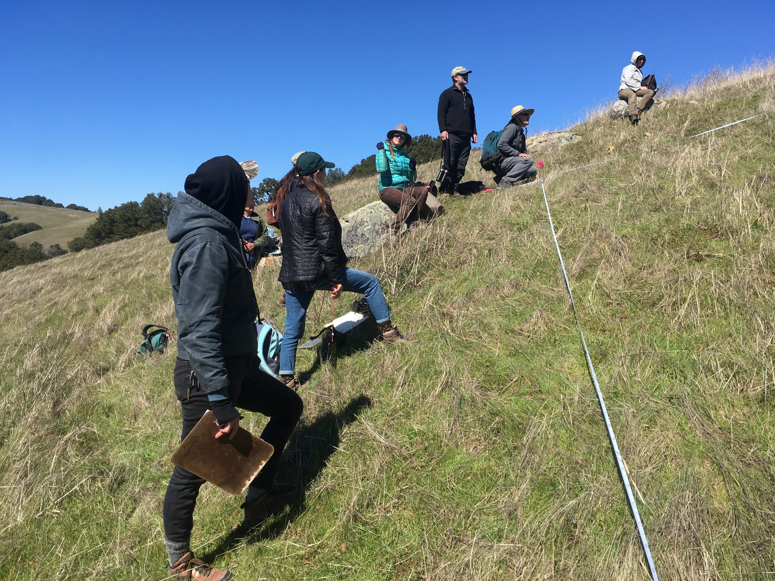 UCSC Arboretum students were trained in making releve surveys by Julie Evans from the California Native Plant Society. The training took place at one of the Midpeninsula Regional Open Space District properties, where UCSC students were used extensively in conducting surveys. Photo credit: Lucy Ferneyhough, courtesy of University of California Santa Cruz Arboretum.