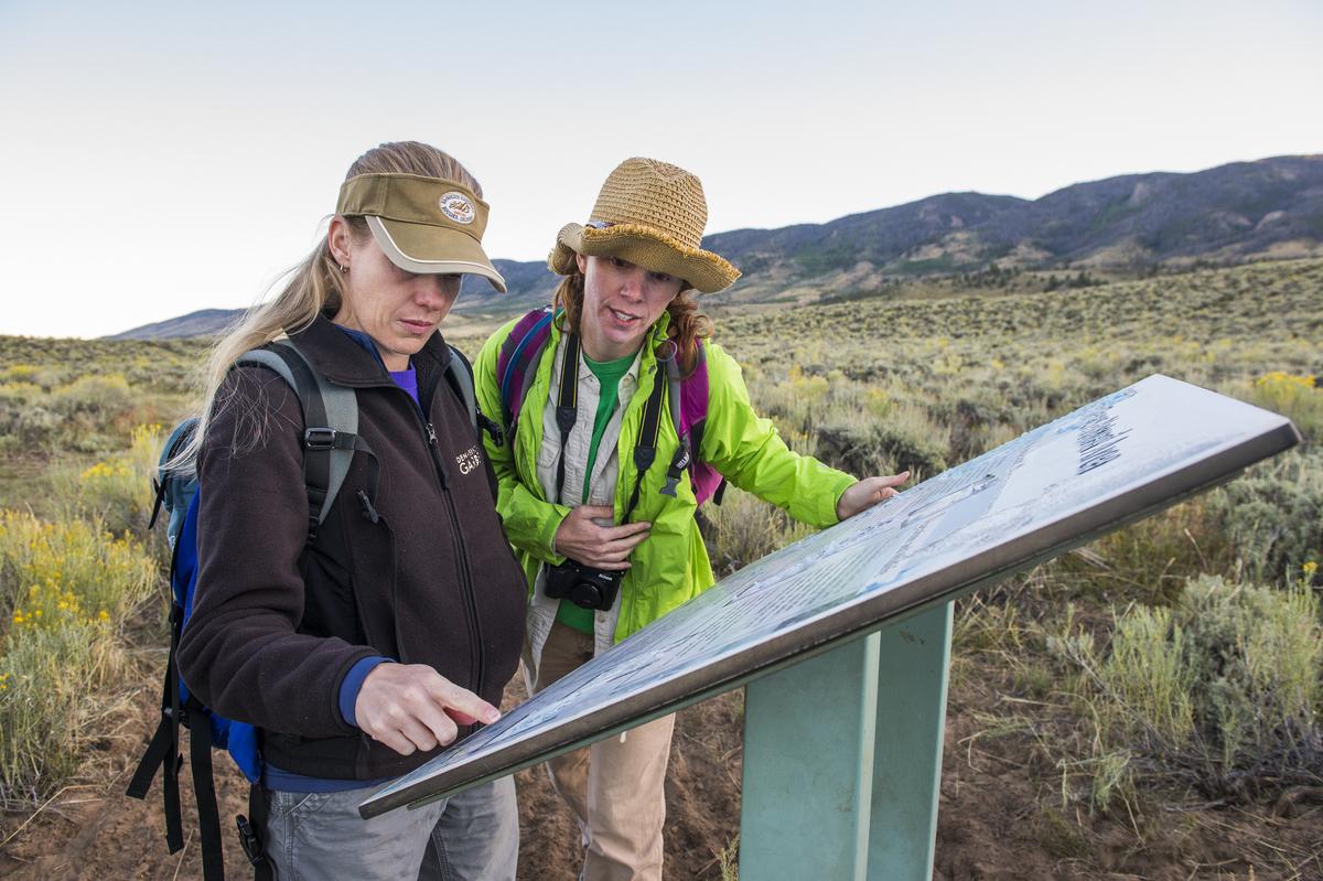 Jennifer (left) in the field studying Corispermum navicula.