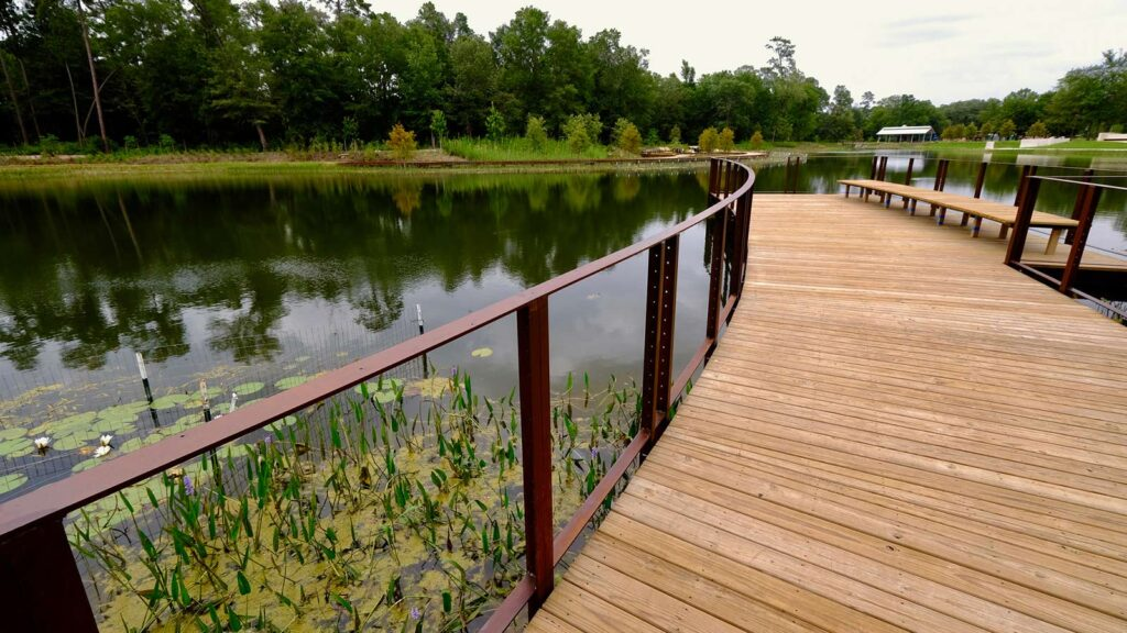 The lake edge, accessible by boardwalk.