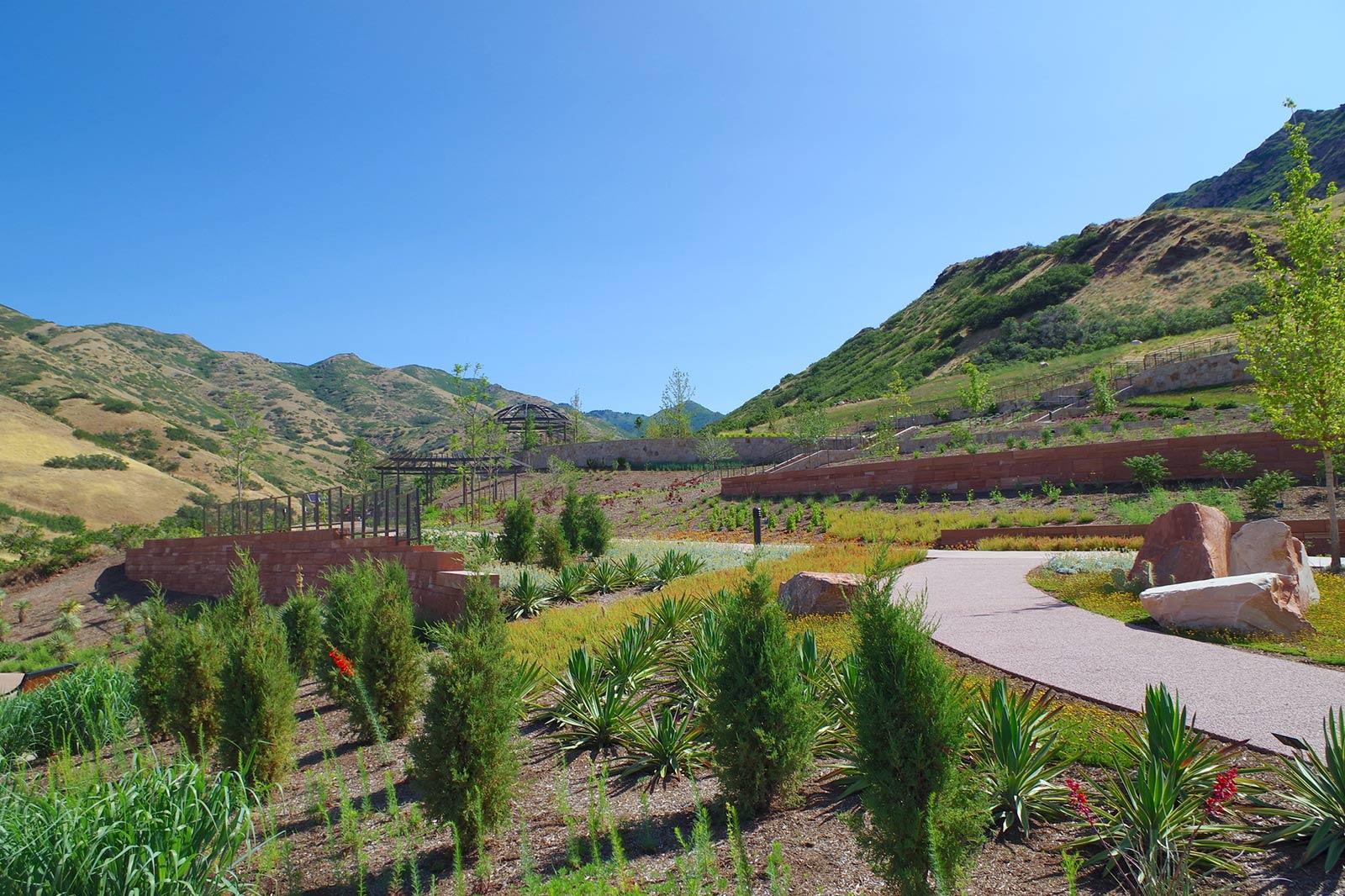 The Adapative Beauty garden