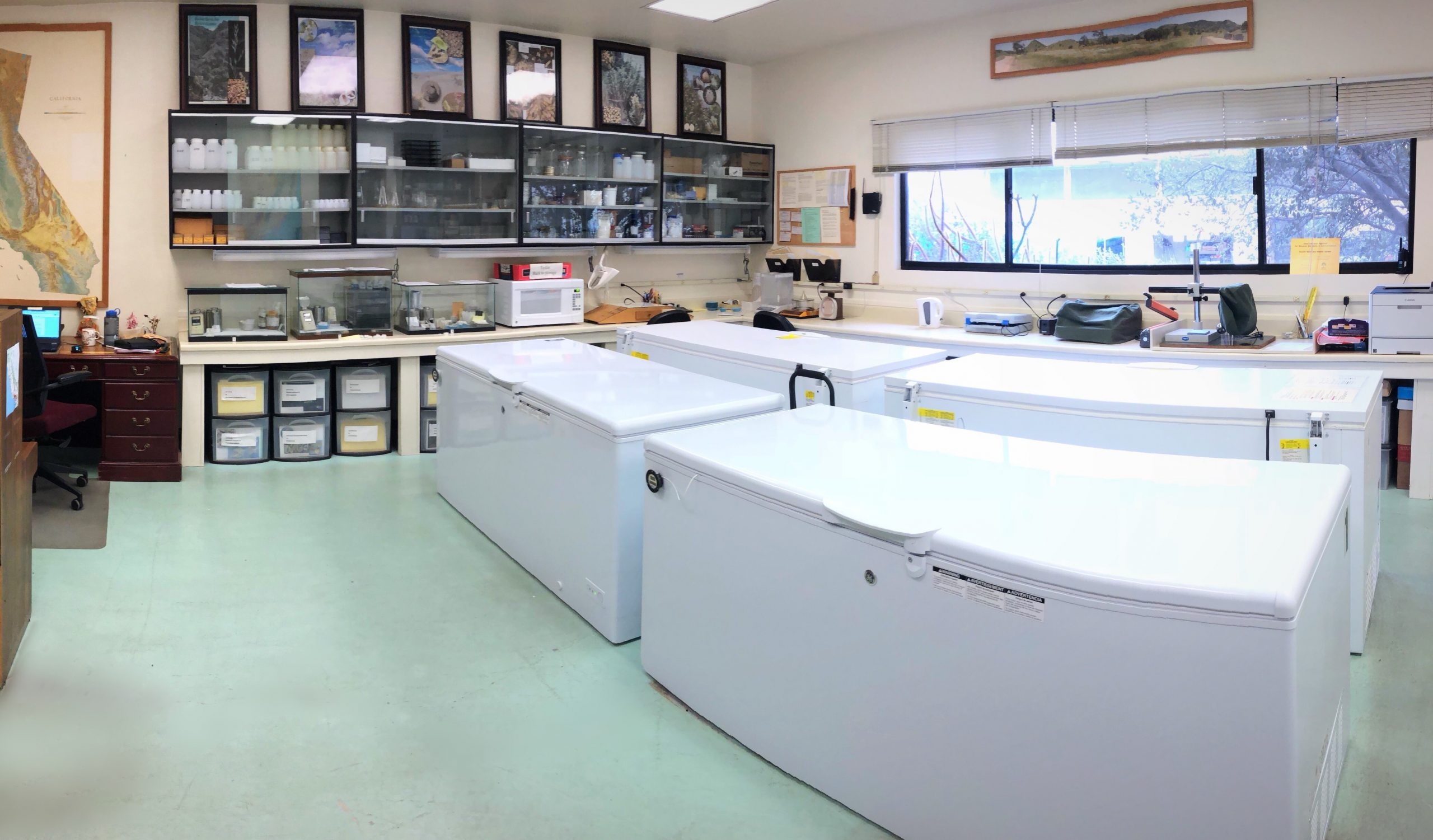 Rancho Santa Ana's California Seed Bank is home to many of the collections, made by both RSA's team and collaborating partners.
