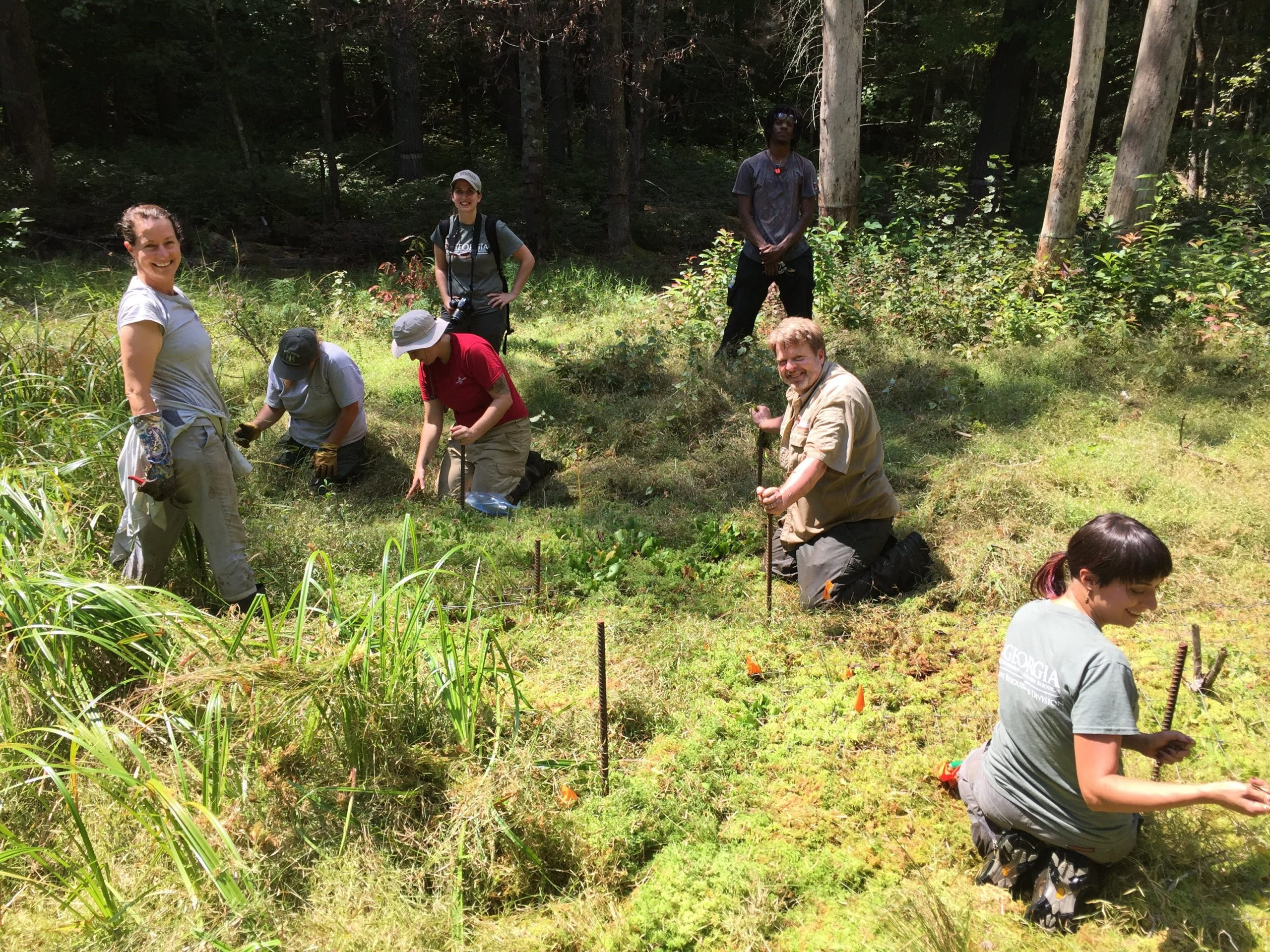 """Ceska, at left with GPCA colleagues, """"gardening"""" in situ around imperiled bog species to provide more light for flowering. GPCA partners include U.S. Forest Service staff and interns, Atlanta Botanical Garden staff (Jess Stephens in red), Georgia Department of Natural Resources staff. Photo credit: Lila Uzzell, courtesy of Atlanta Botanical Garden."""