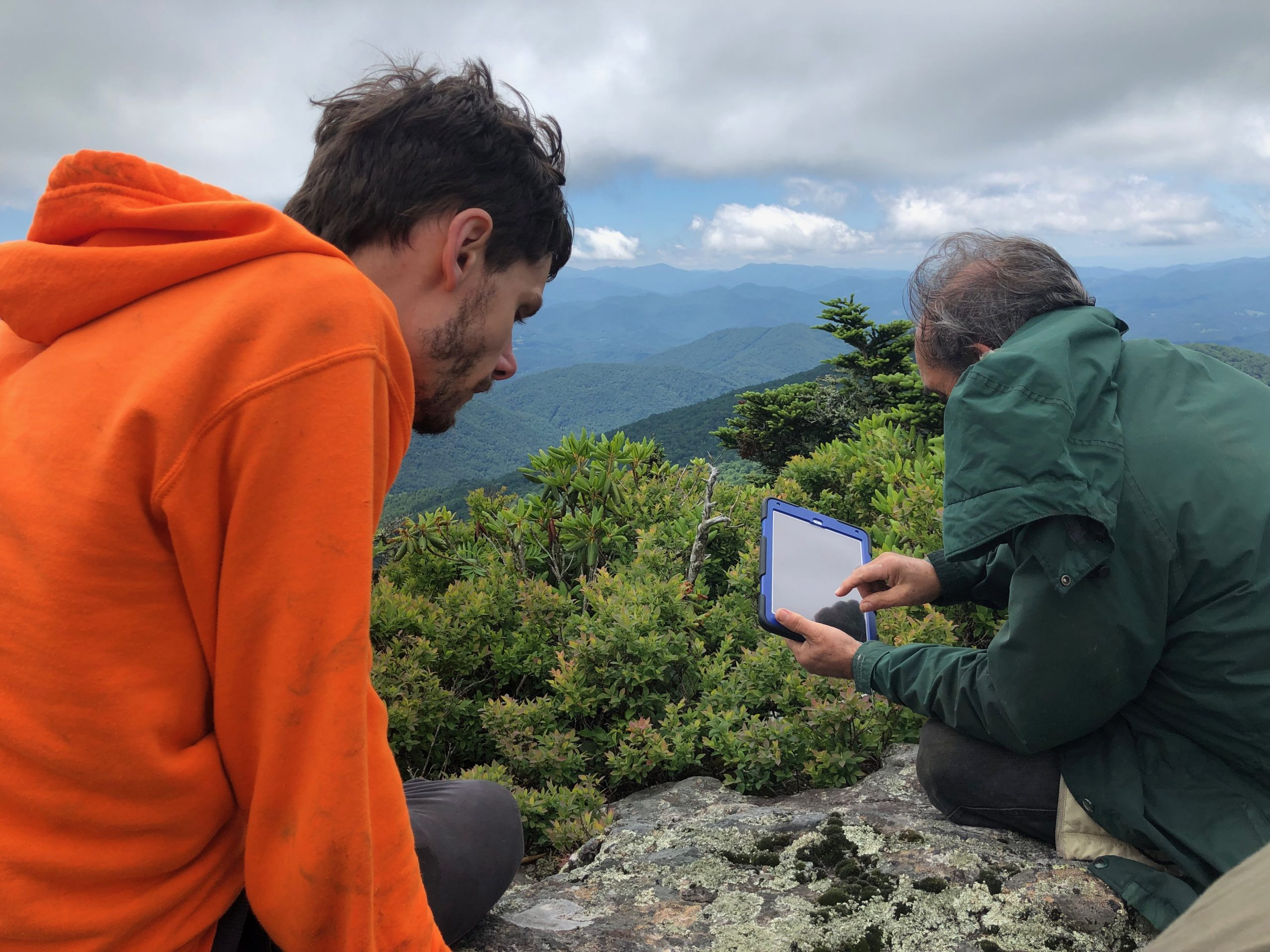 James Lendemer and North Carolina National Forest Service Botanist Gary Kauffman surveying for rare lichen species on a windy cliff of Roan Mountain, North Carolina.