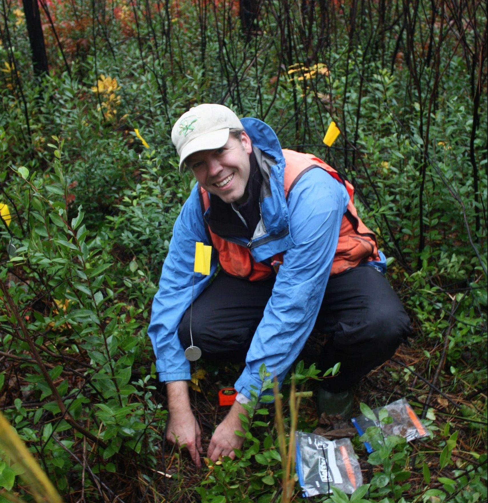 Mike Kunz (NCBG) plants Lysimachia asperulifolia.