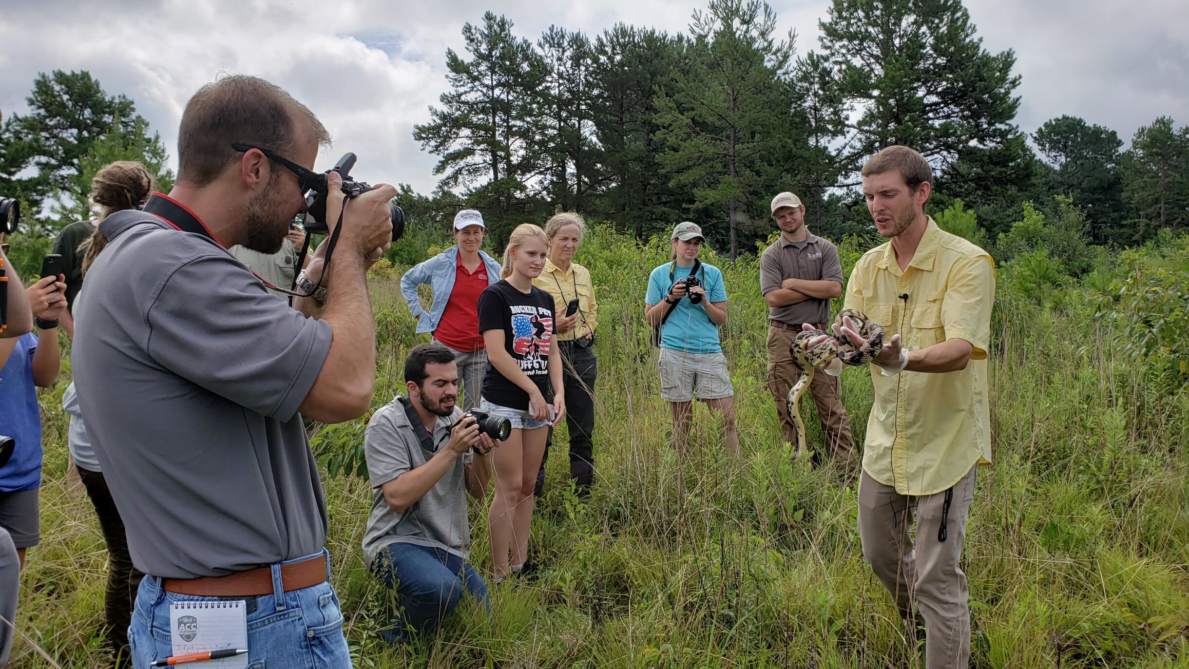 This snake release was a career highlight in 2019 for Ceska in red. Clemson University PhD Candidate, Bryan Hudson and his technicians had been looking for this species of Pine Snake, Pituophis melanoleucus, S3, Georgia Threatened, in North Georgia for nine years. Finding this snake, named Russell, was credited to the habitat restoration for Smooth Coneflower, Echinacea laevigata, G2/S2, work led in Georgia by the US Forest Service and the GPCA. Photo credit: Patricia Ceska.