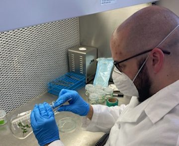 Dr. Ree has been able to provide care for tissue cultured specimens and continue some experiments during stay-at-home orders – scheduling time to work solo in the lab and following strict cleaning protocols. Photo credit: Jill Andrews, courtesy of San Diego Zoo Global.