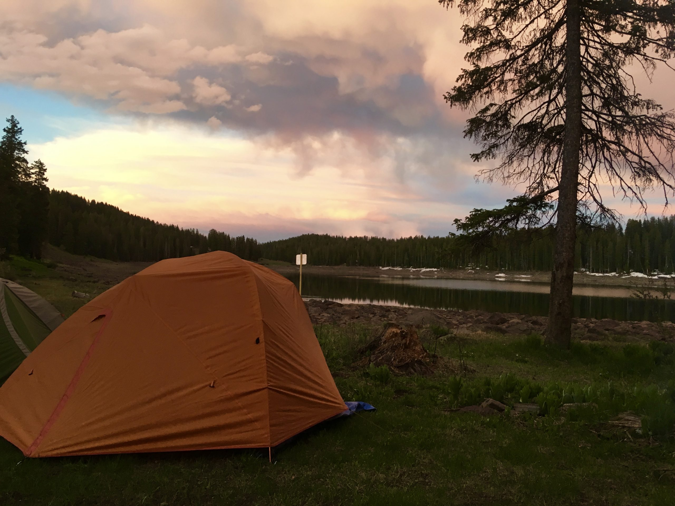 Camp at Ward Lake, scouting for Grand Mesa beardtongue.