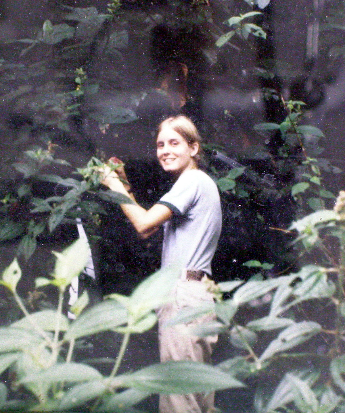 Dr. McDade, 1980 Panama – Smithsonian Tropical Research Institute.