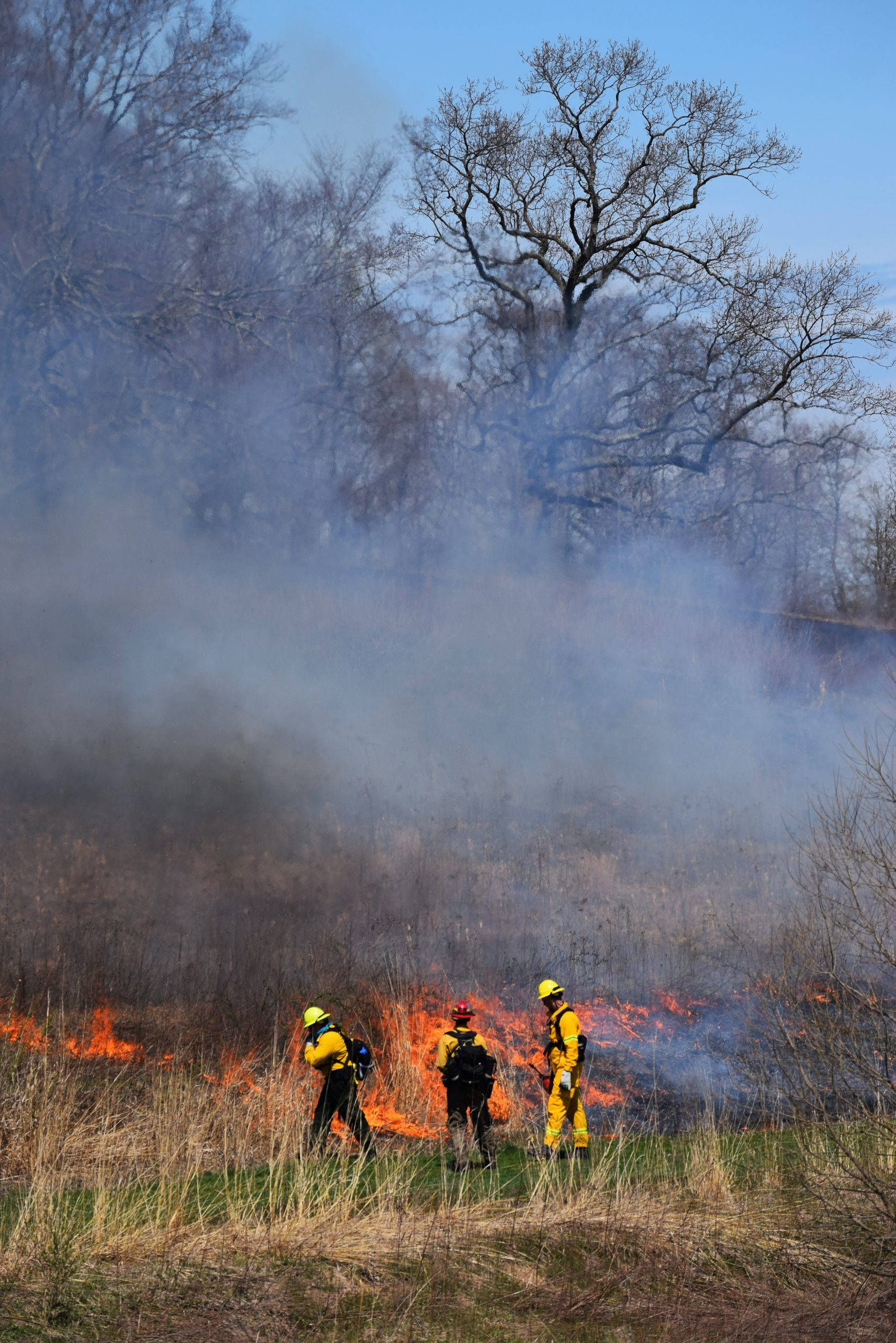 Crew members participate in a prescribed burn in the Meadow Garden at Longwood Gardens.