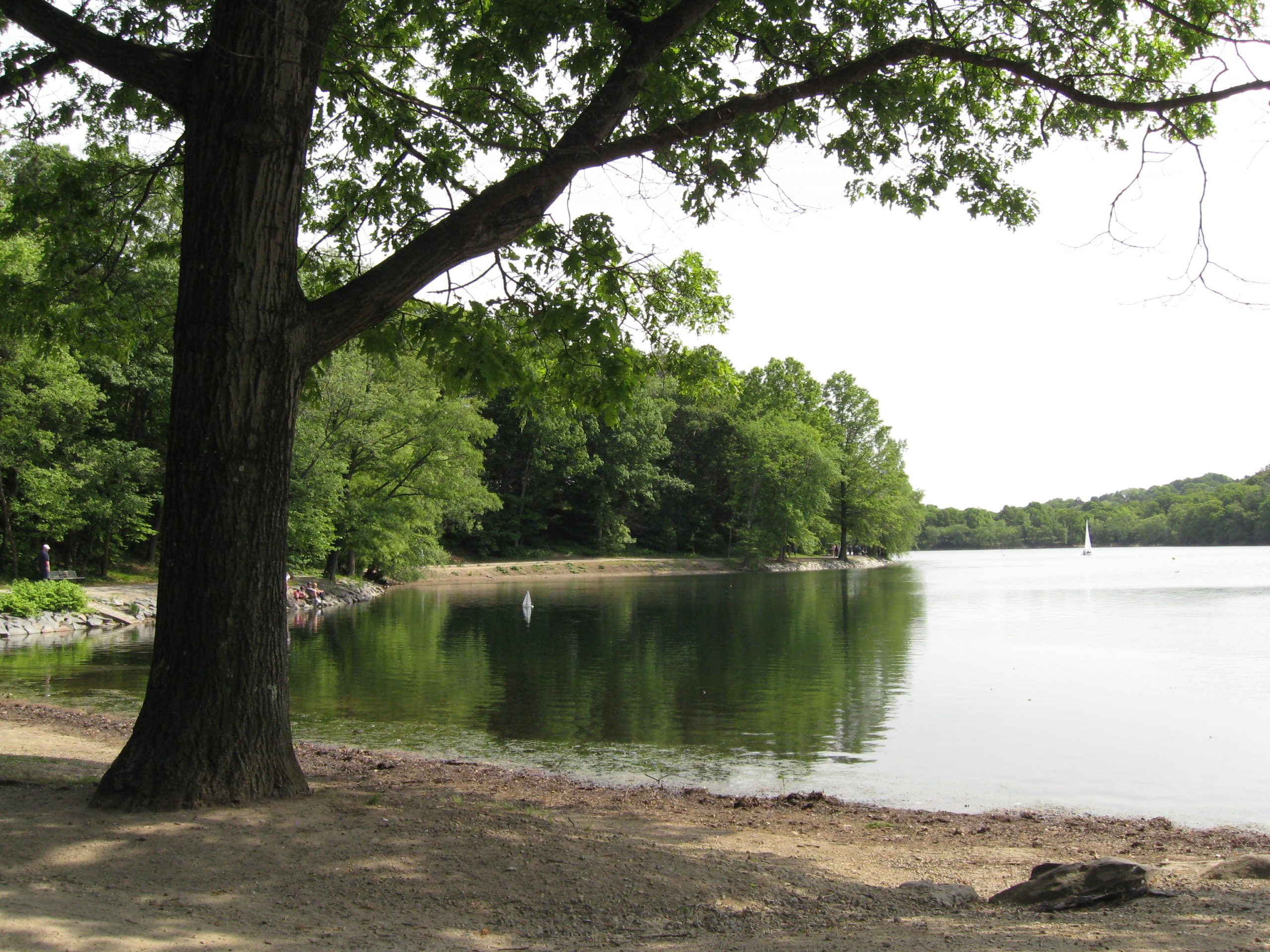 Image of Jamaica Pond. Photo credit: Rene Beignet